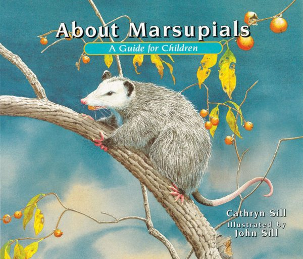 About Marsupials