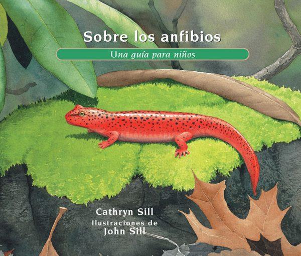 Sobre los anfibios